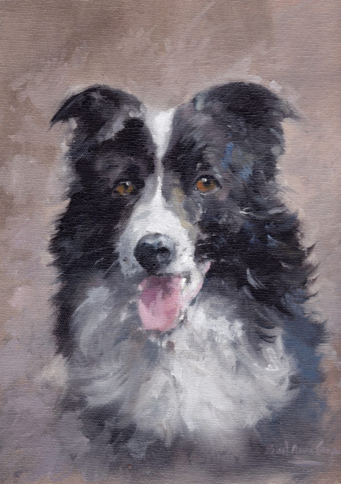 """Border Collie"" by David 'Mouse' Cooper."