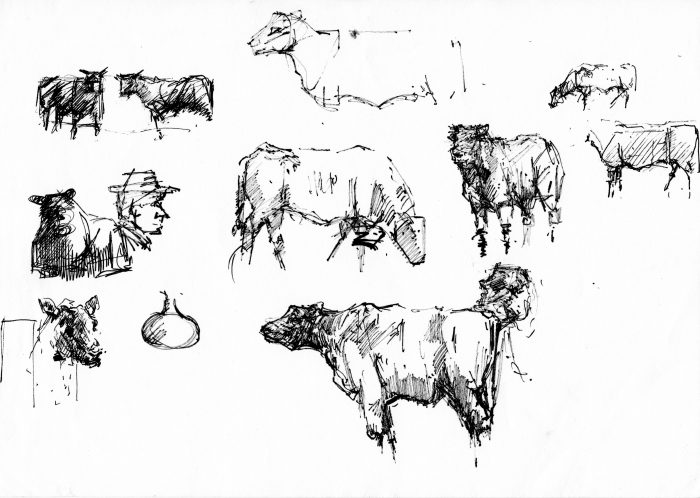 """Cattle Studies"" by David 'Mouse' Cooper."